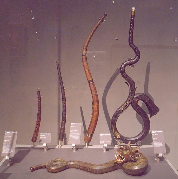Cornett family: (l. to r.) curved descant, curved treble, lysard (tenor), bass. Unusual dragon-shaped bass cornett